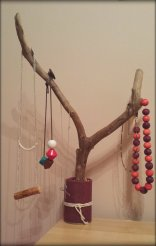 Tree Branch Jewellery Stand